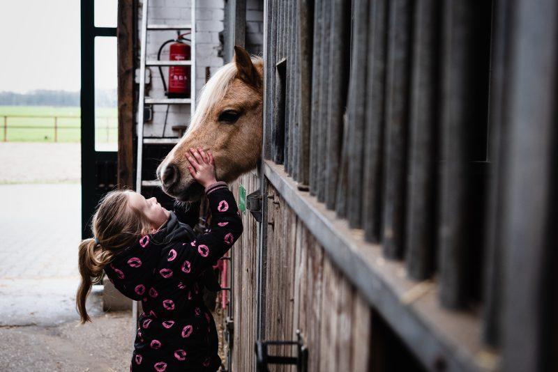 day in the life, familie reportage, bij mensen thuis fotograferen, kinderen op de boerderij, fotograaf Assen, natuurlijkliacht fotograaf, fotograaf in Drenthe, lekker buiten spelen, dieren op de boerderij, paarden meisjes