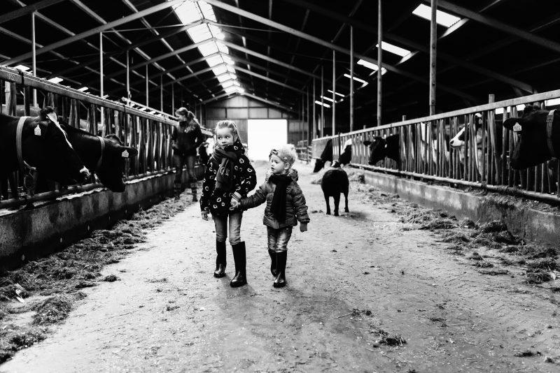 day in the life, familie reportage, bij mensen thuis fotograferen, kinderen op de boerderij, fotograaf Assen, natuurlijkliacht fotograaf, fotograaf in Drenthe, zusje door de koeienstal